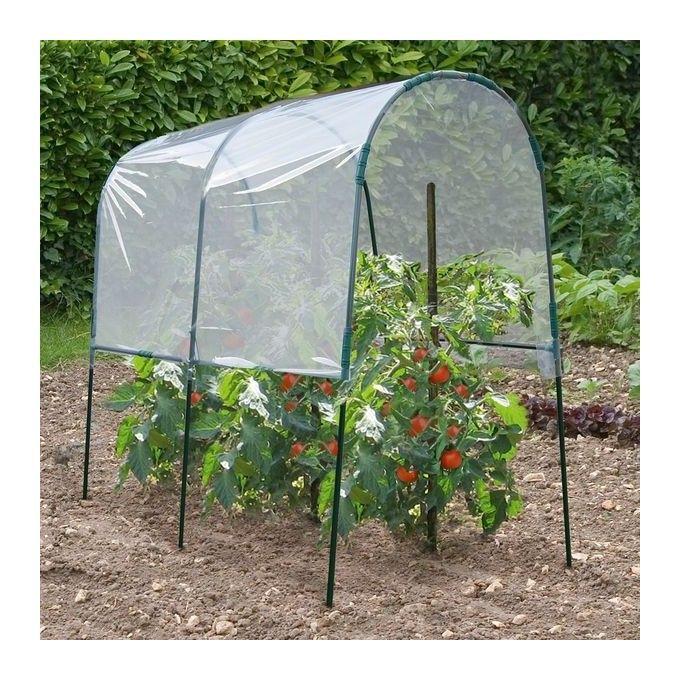 cultiver ses tomates | serre, tomates et jardinage