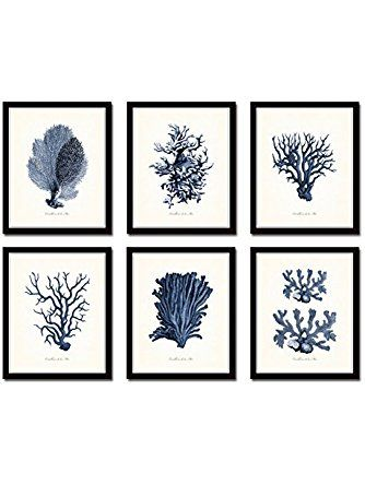 Indigo Sea Coral Set Of 6 Giclee Fine Art Prints Unframed