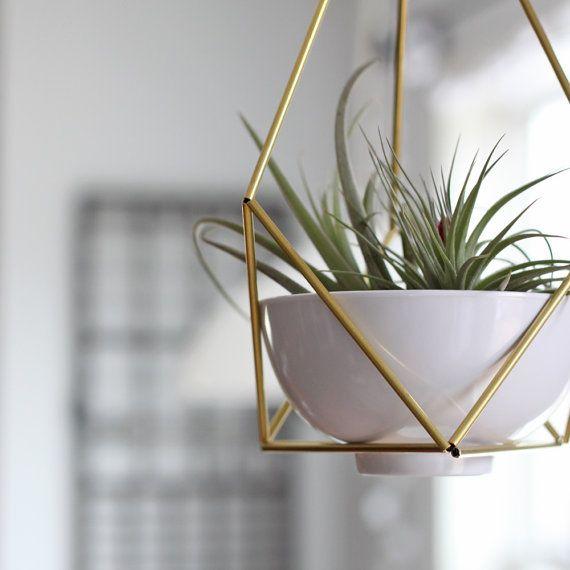 Lotus 01 Geometric Modern Hanging Planter Geometric