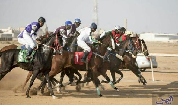 انطلاق المرحلة الثانية من سباق الفروسية في مدينة الرياض Horses Animals