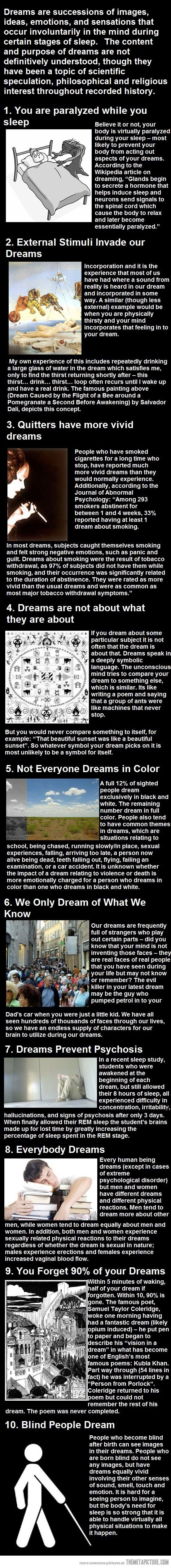 Top 10 Most Amazing Facts About Dreams Facts About Dreams Interesting Facts About Dreams Fun Facts