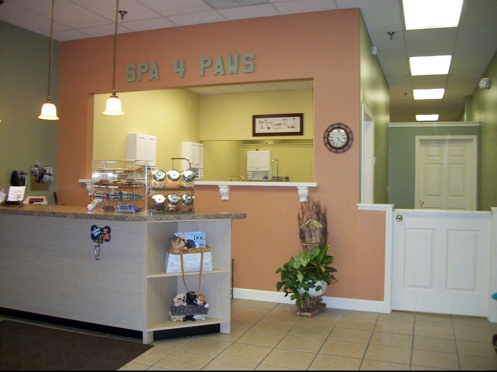 Dog grooming salon google search like the 1 2 door and for A perfect pet salon