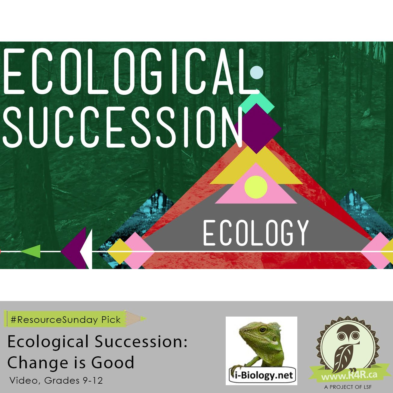 Ecological Succession Change Is Good Is Featured As