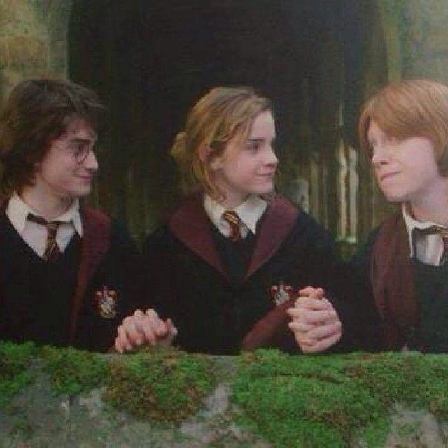 Harry Potter Y El Caliz De Fuego Harry James Potter Harry Potter Actors Weasley Harry Potter