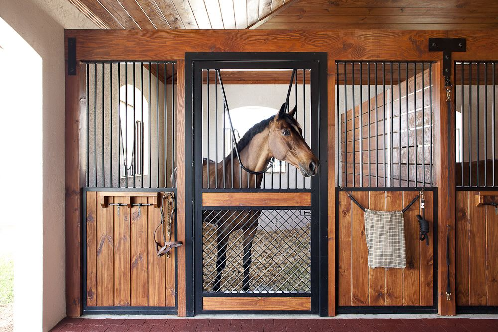 lucas equine horse stall with understated sides and a bold door this is my dream stall design - Horse Stall Design Ideas