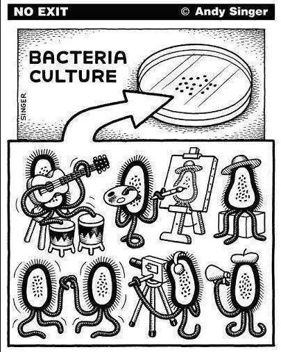 Jejeje Biotecnologia Ciencia Divertida Microbiologia