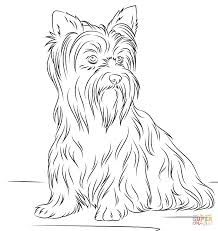 Image Result For Elderly Cartoon Coloring Pages For Adults For