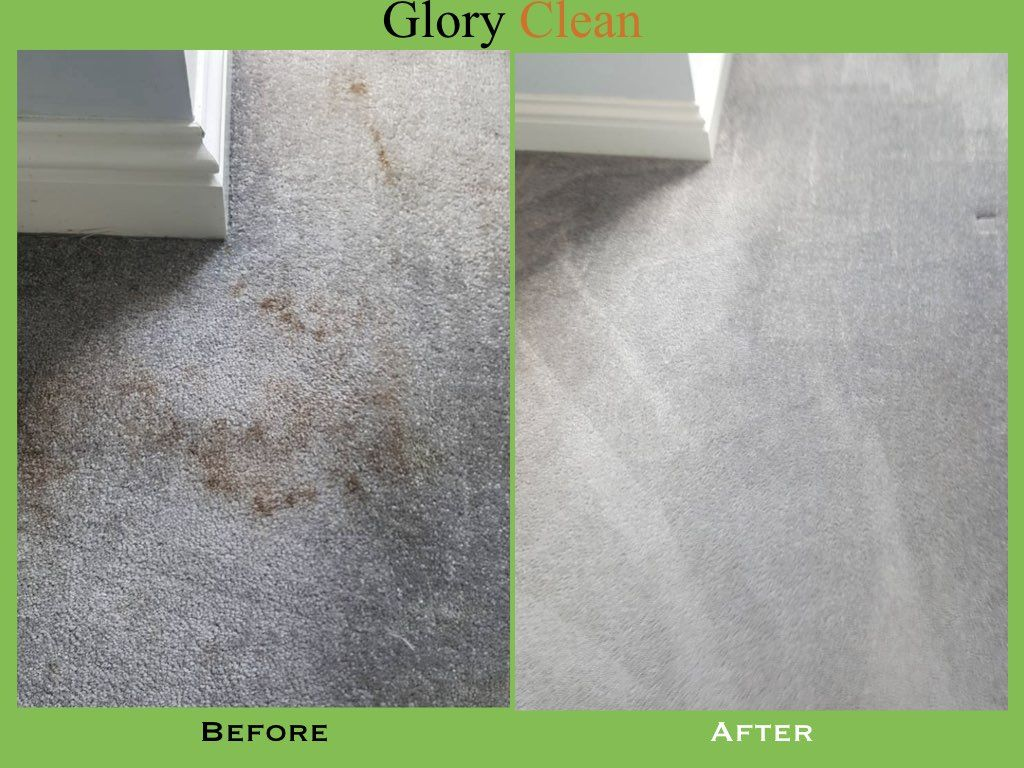 When It Comes To Carpetcleaning In London No Other Service Can Match The Quality Of Glory Clean S Service How To Clean Carpet Domestic Cleaning Carpet Steam