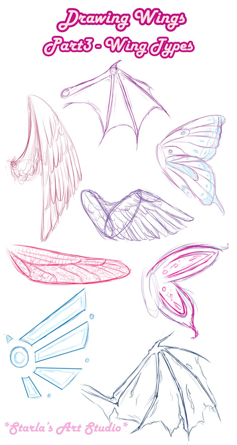 Types Wings ~ Starla's Art Studio