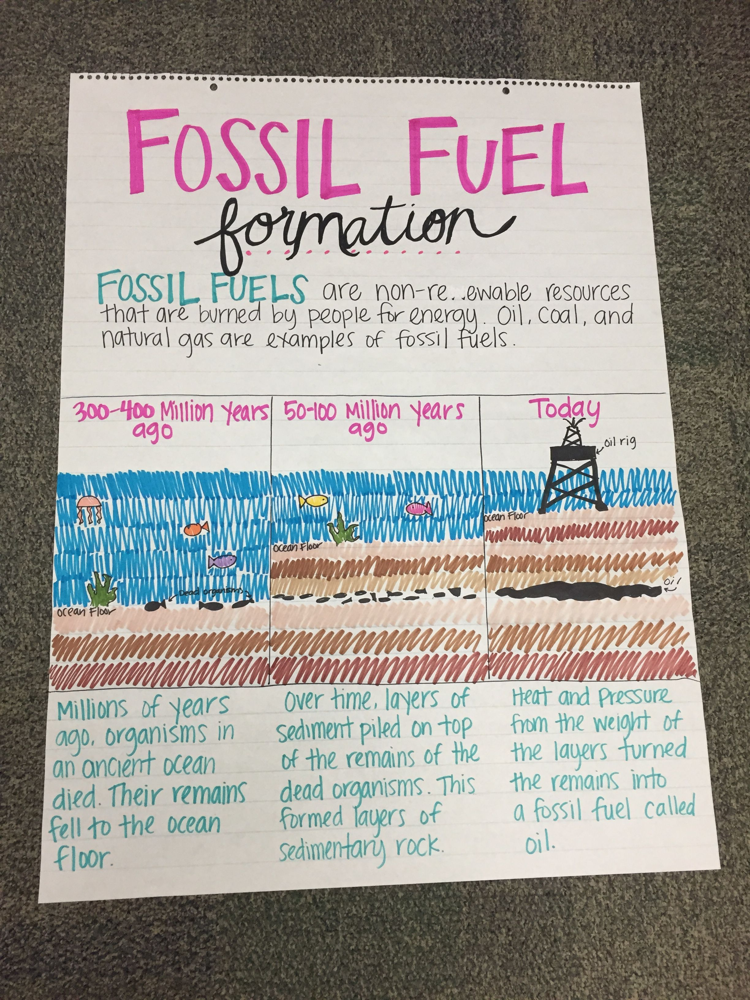 Fossil Fuel Formation Anchor Chart