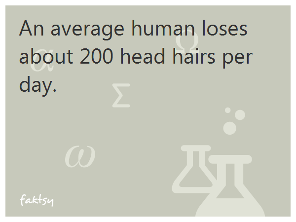 An average human loses about 200 head hairs per day.