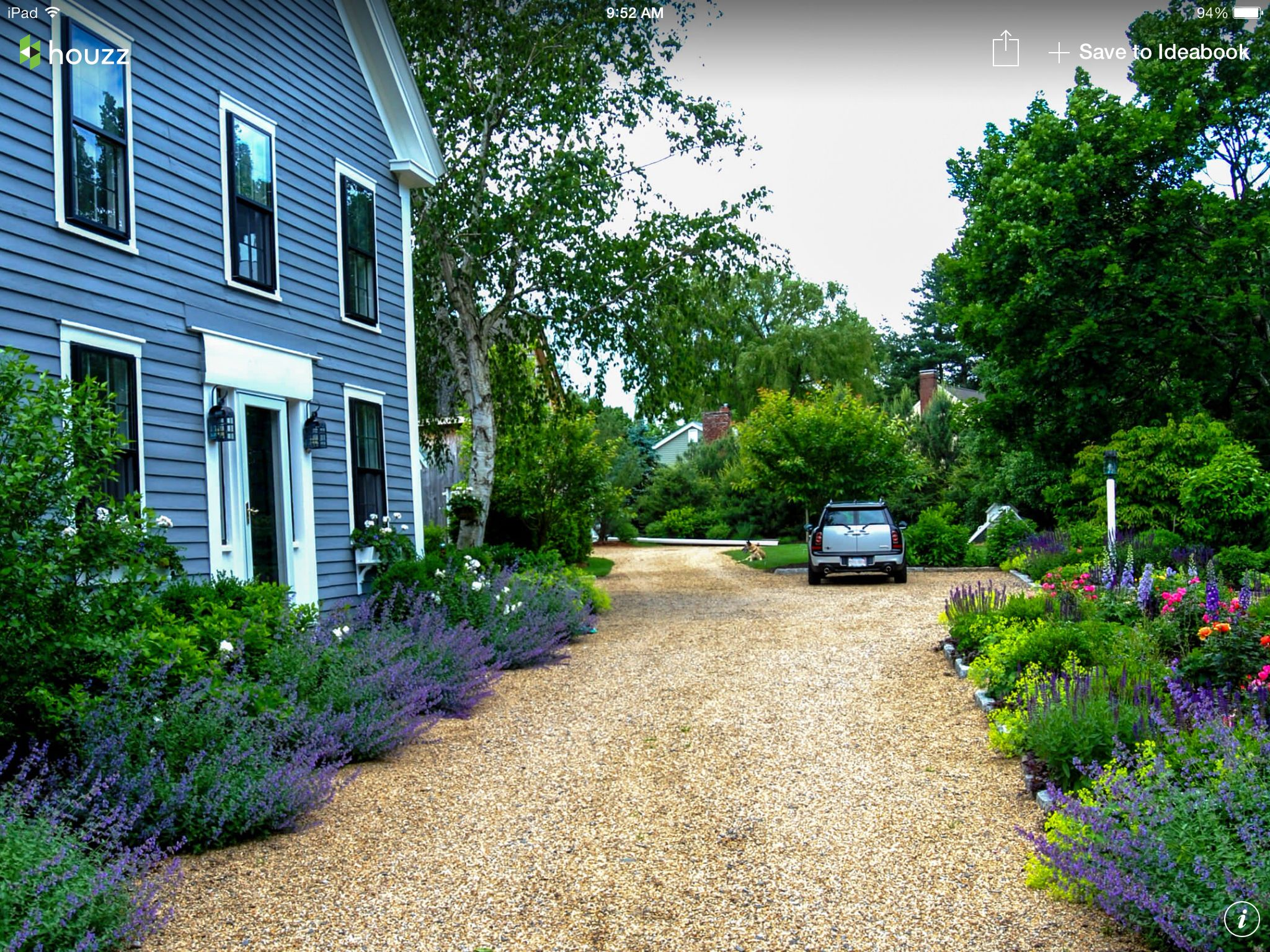 Lavender, gravel driveway, seaside,