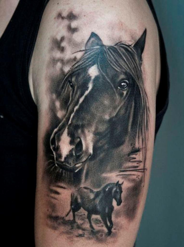 20 horse tattoos head tattoos tattoo and shooting star for Horse head tattoo designs