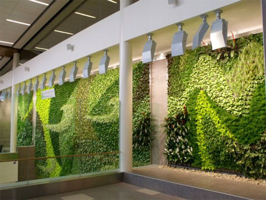 Adding Style Clean Air Stunning Living Green Wall Green Wall Green Wall Plants Living Green Wall