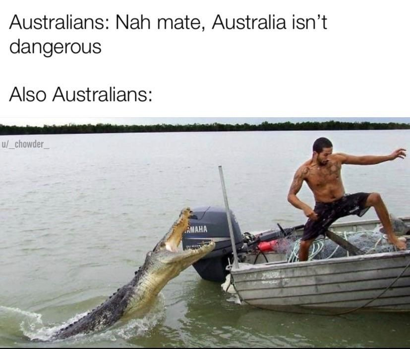 Australia Is Safe And Other Hilarious Jokes Memes Australia Funny Meanwhile In Australia Funny Jokes