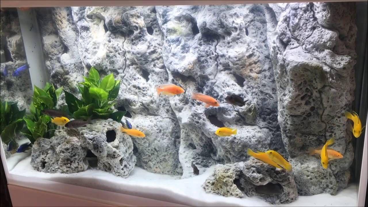 aquarium background for marine fish tanks or cichlids aquariums the