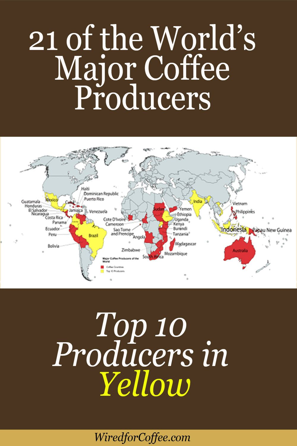 Where Does Coffee Come From? 21 Countries and the Top 10