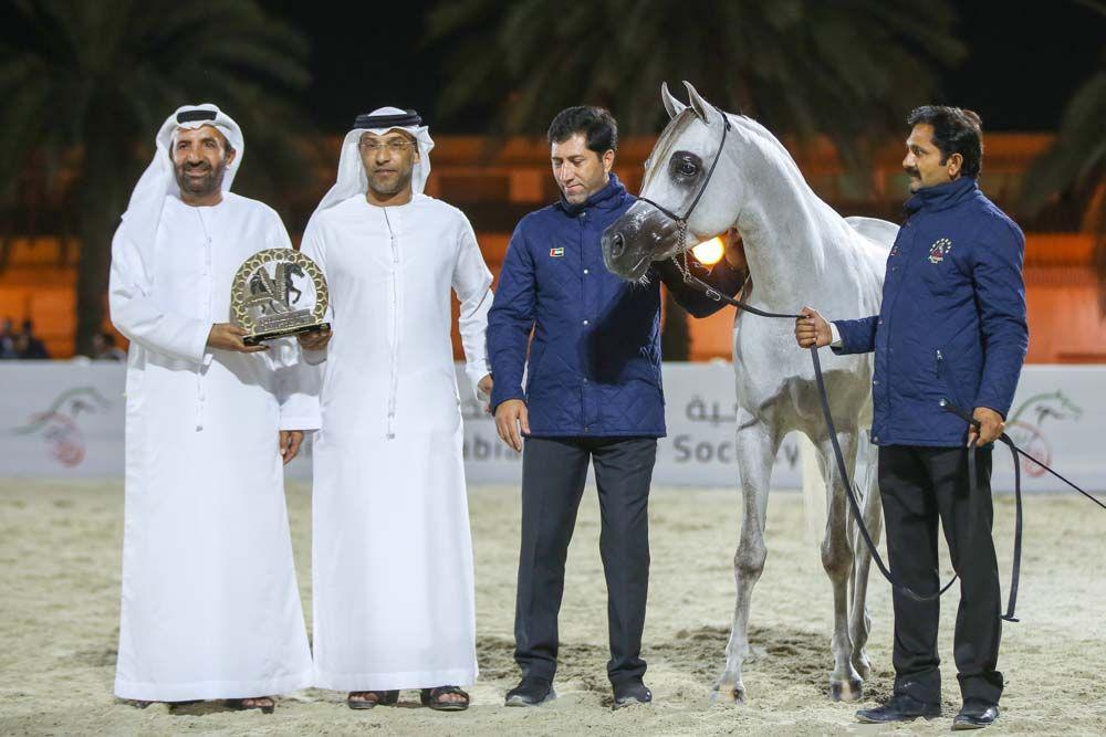 5 القاب ملونة لخيول عجمان في بطولة الإمارات للمربين Chef Jackets Coat Fashion