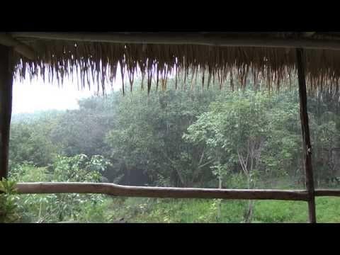 yoga nidra relaxation technique for deep sleep  youtube