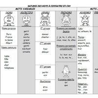 Tableau récap nature des mots CM1 | Cm1, Mots et Tableau
