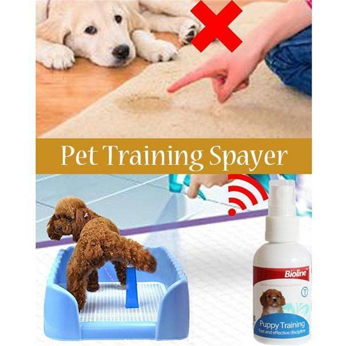 Toilet Attractant Dog Training Spray Inhomepi Potty Training Potty Training Puppy Dog Potty Training