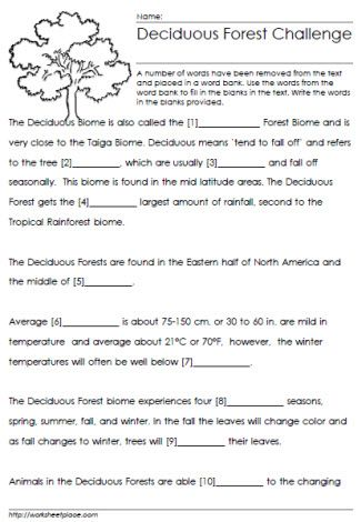 Deciduous Forest Cloze Worksheet