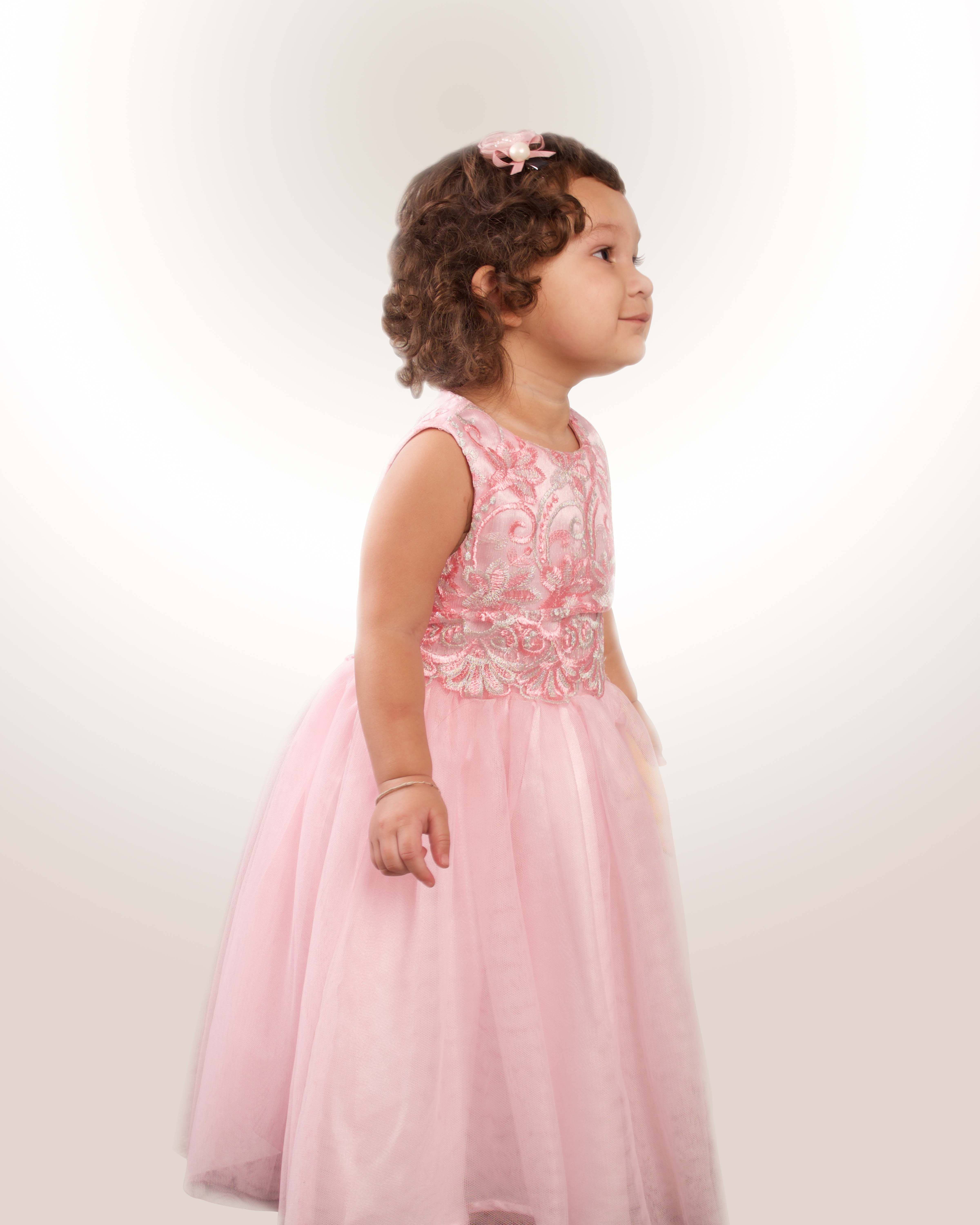 Beautiful lace silver pink special occasion gown, flower girl dress ...