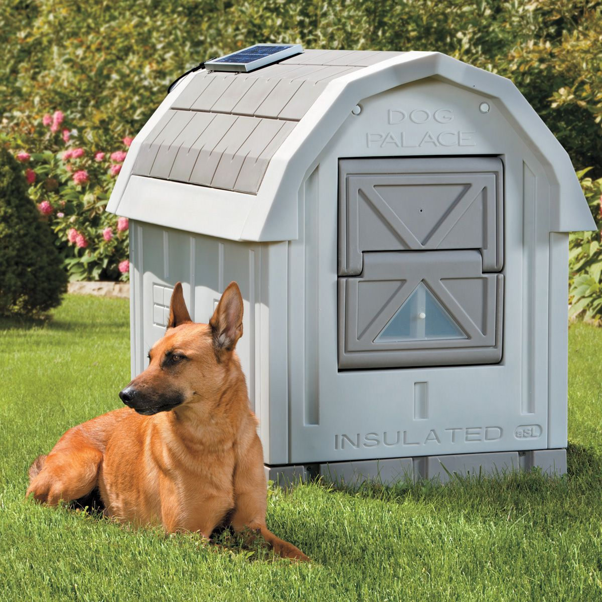 Dog Palace Insulated Dog House Insulated Dog House Dog House