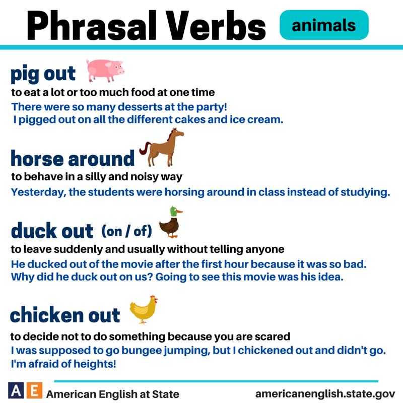 Vet Synonyms, Vet Antonyms | Merriam-Webster Thesaurus