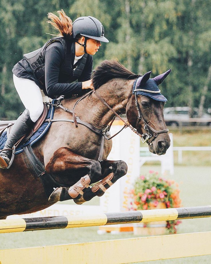 как фотографировать конный спорт правильной установки