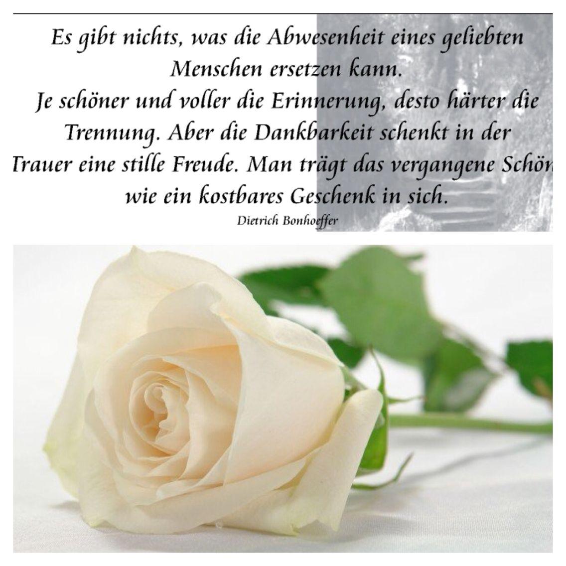 Trauer Abschied 140815 Trauer Tröstende Worte