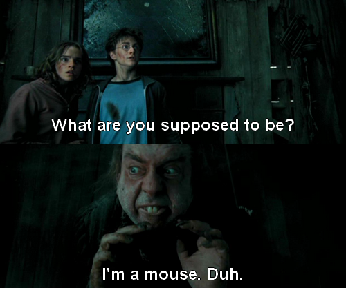 harry potter mean girls | ... to you: Scenes from Harry Potter with Mean Girls quotes - Imgur