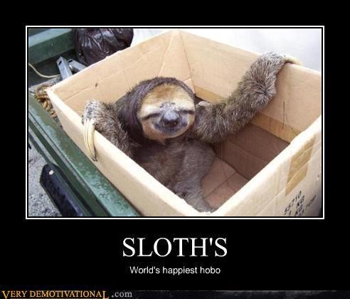 Even More Motivational Posters Jokes Sloths Funny Sloth Meme Sloth