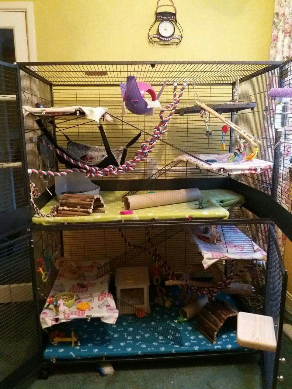 My Most Recent Set Up Trying To Add More Fun Things 3 Savic Suite Royal Xl Housing 3 Cutie Rats Pet Rat Cages Pet Rats Diy Stuffed Animals
