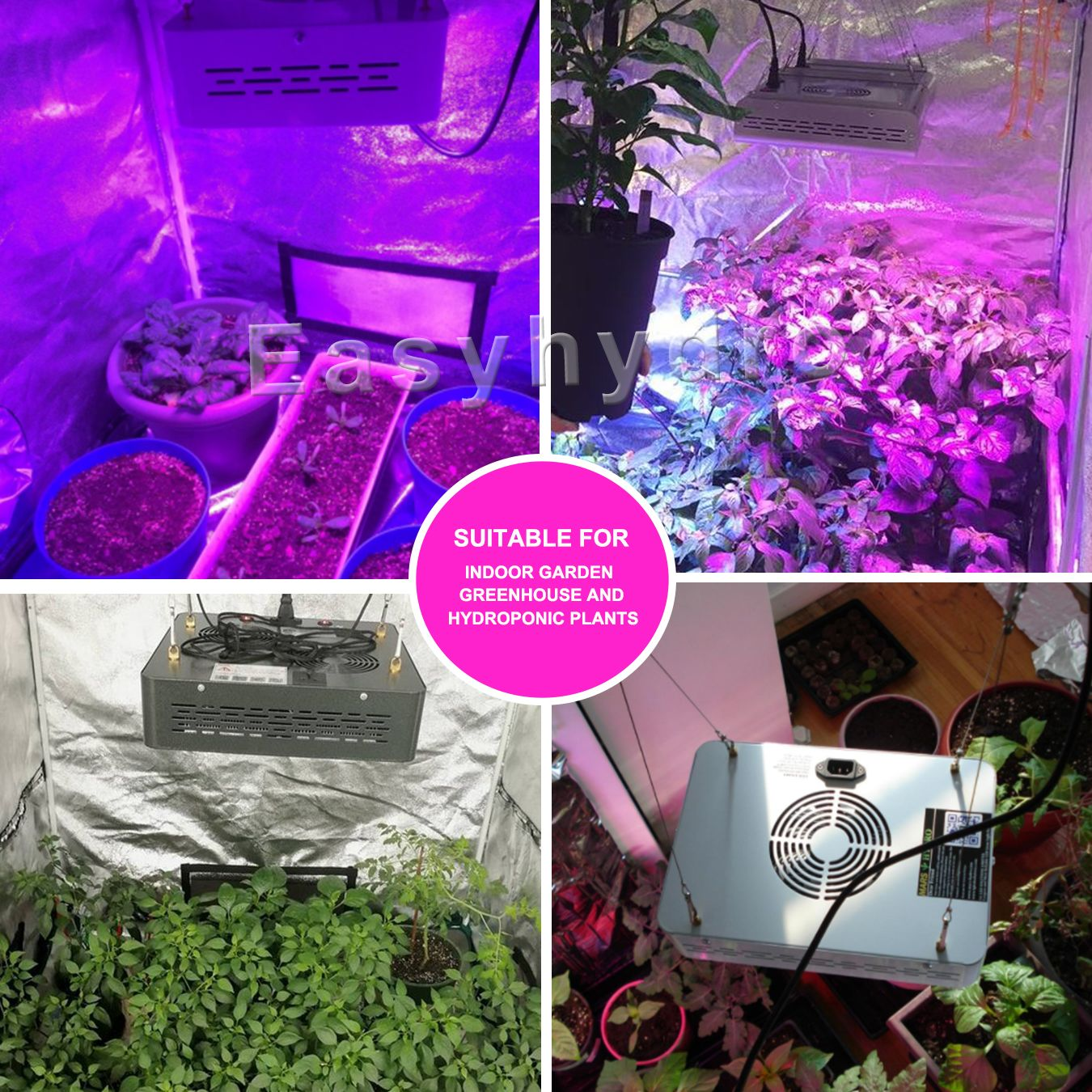 LED grow Light for Pepper hot chilispinach tomato lettuce strawberry etc. indoor vegetable fruit and flower growing. #easyhydro #ledgrowlights # ... & Details about Mars ECO 300W LED Grow Light for Hydroponic 27u0027u0027 Grow ...