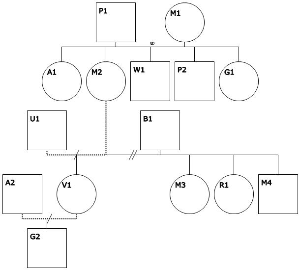 Creating A Genogram With Wingeno  DnaSlktforskning Diverse