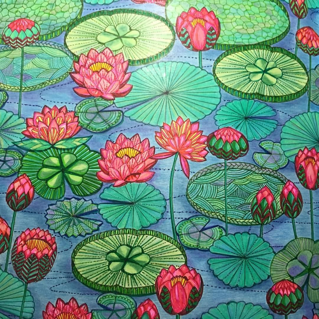Lotus designs coloring book - Deanna T Au On Instagram Lilly Pads Lotus Flowers Lillypads