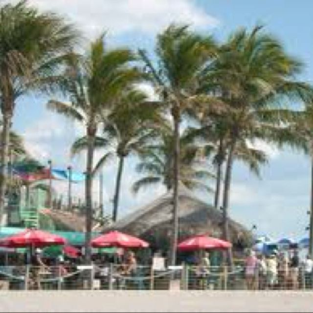 Sharky's on the Pier, Venice, Florida. Another one of my favorite places....I can't wait to go back