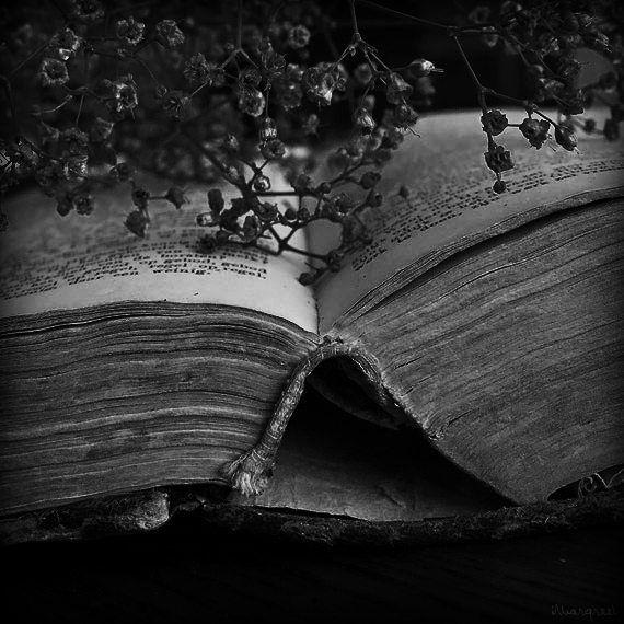себе темные книги картинки моё
