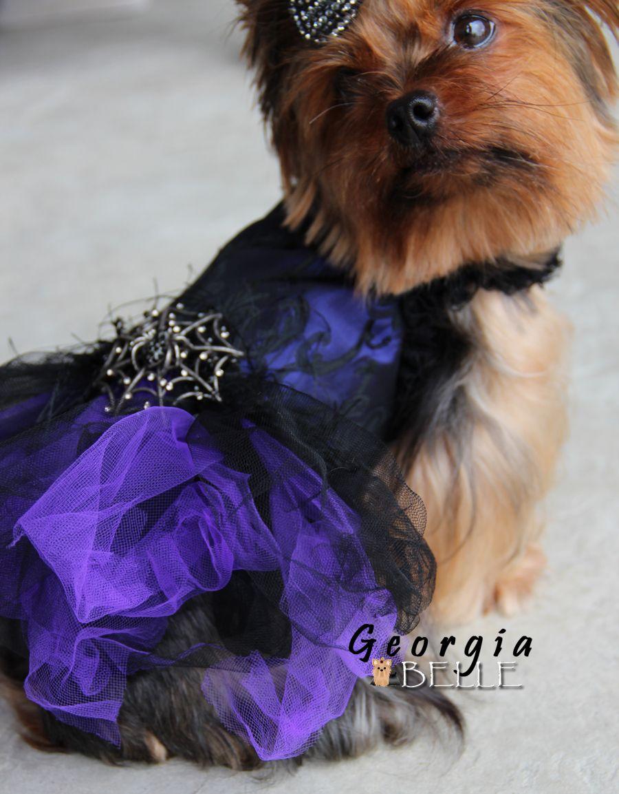 Georgia Belle In Ahh