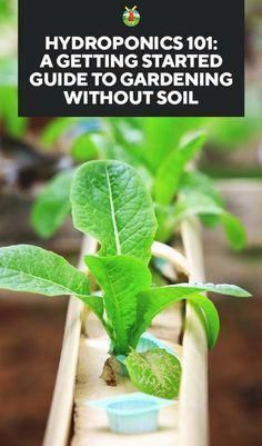 Hydroponics 101: A Getting Started Guide to without Soil 101: A Getting Started Guide to without Soil