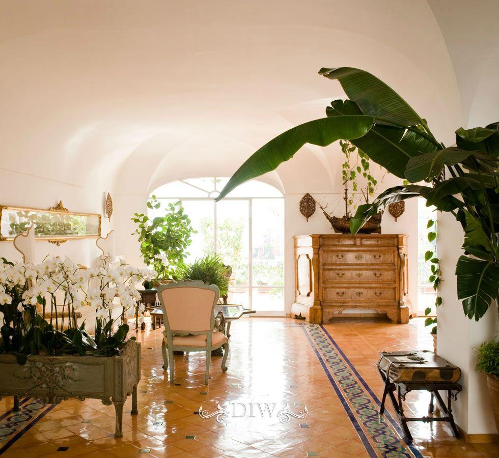 Orchids, palms