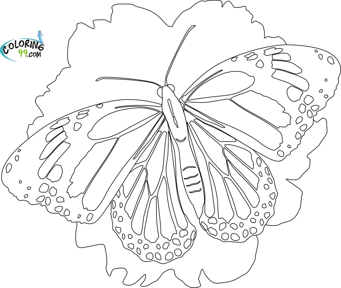 Butterfly Coloring Pages | Coloring99.com | Fantasy Coloring ...