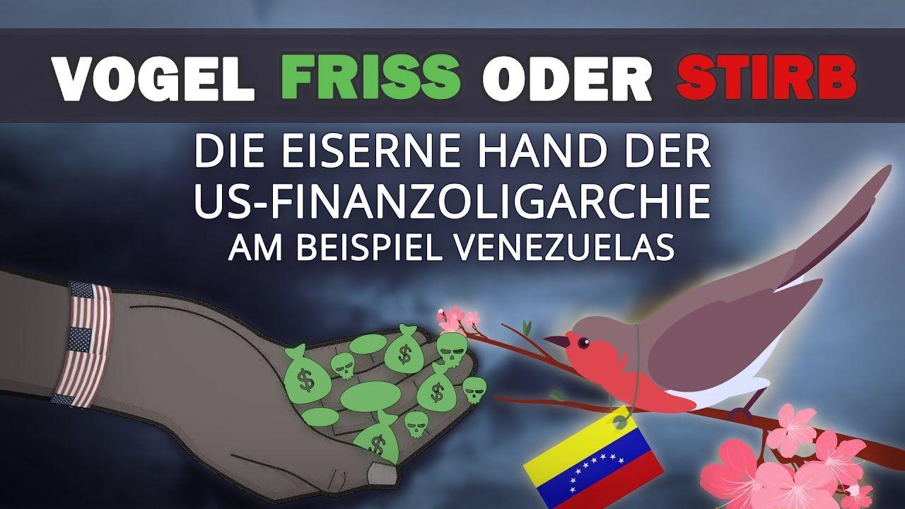 Vogel friss oder stirb - die eiserne Hand der US-Finanzoligarchie | 28.0...