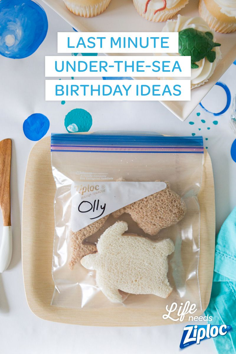 last-minute under-the-sea birthday ideas | oceanography halloween