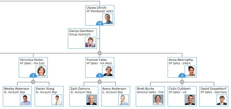 online org chart maker - Organisation Chart Maker