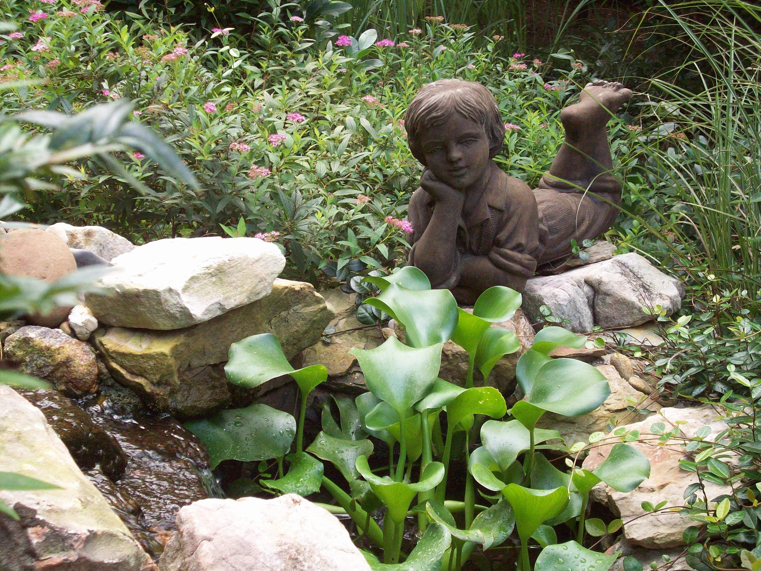 Whiling away the summer hours my garden pinterest summer