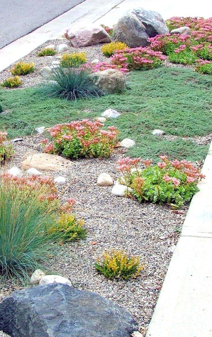 Boulevard Lawn Alternative2 Small Front Yard Landscaping