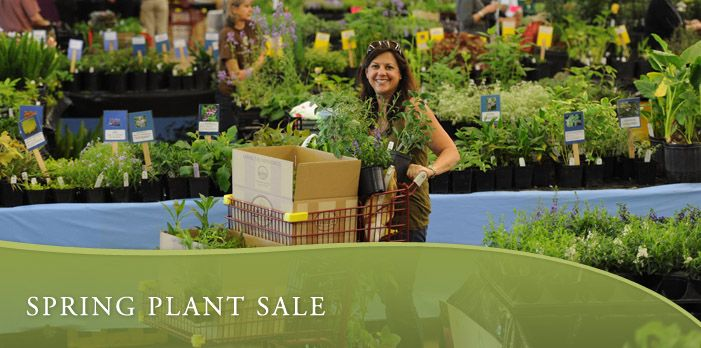 ab75c1b7aa9e8f3f94f78c7b720b0232 - Birmingham Botanical Gardens Spring Plant Sale
