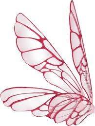 Side View Of Angel Wings Google Search Pink Fairy Wings Fairy Wings Drawing Blue Fairy Wings